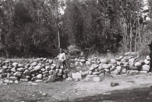 Woman farmer, Arani, Bolivia, 2009. Photo: T. Stenn
