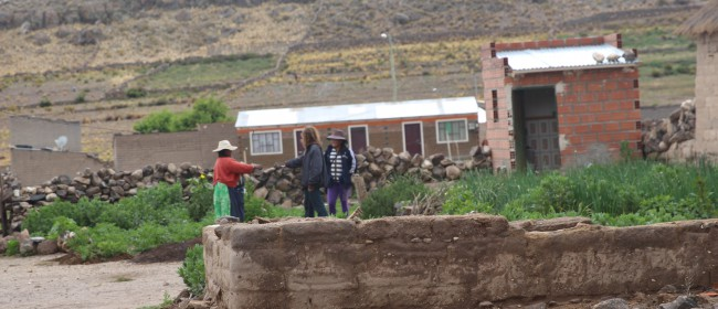 DAY 33 – the difficult evolution of Bolivia's quinoa market